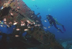 Buceo en Ilhabela
