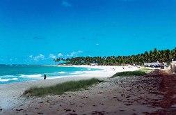 Playa Camboa en Ipojuca