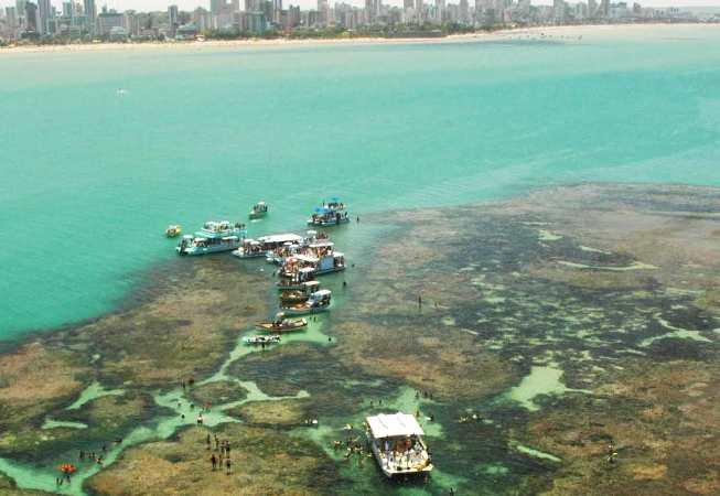 banco de coral Picãozinho