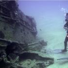 Buceo en las cálidas aguas de Maceió