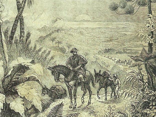 Historia de Curitiba: ciclo del tropero