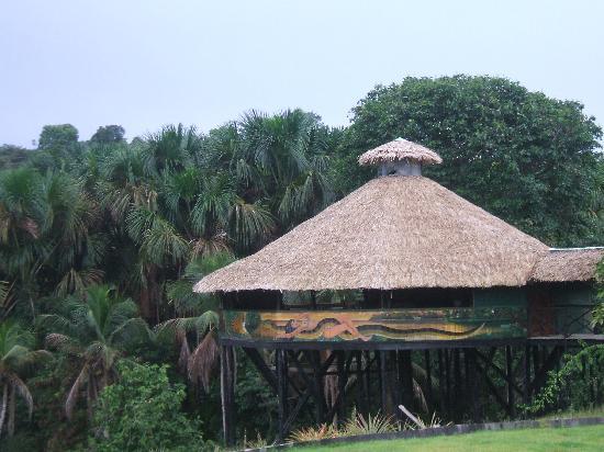 Eco Resorts familiares en la selva amazónica: Amazonat Jungle