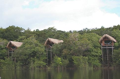 Eco Resorts familiares en la selva amazónica:Juma Lodge