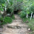 Ecoturismo: trilhas por la Mata Atlántica