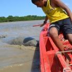 Ecoturismo en Joao Pessoa: el Proyecto Peixe Boi