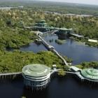 Ecoturismo en Manaos