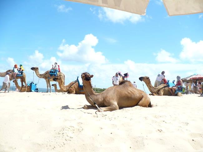 La práctica del ecoturismo en Natal