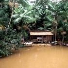 El fascinante mundo del ecoturismo en Amazonas