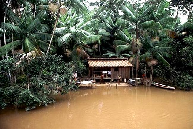 Actividades de ecoturismo en la selva amazónica