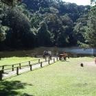 Excursiones temáticas en San Pablo