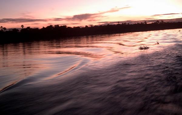 Tours fluviales por el Amazonia