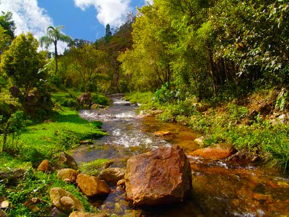 Parque Estatal de la Serra del Tabuleiro en Santa Catarina