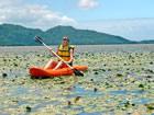 Playas en el Sur de Florianópolis: Lagoa do Peri