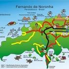 Llegar & moverse en Fernando de Noronha