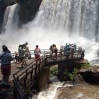 Macuco Safari, la mejor travesía por el Parque de Iguazú