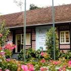 Museos de Blumenau: un encuentro con la historia