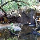 Parque de las Aves en Foz de Iguazú