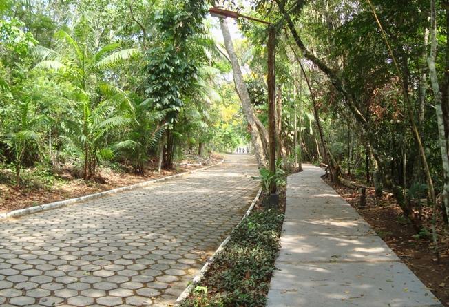 Parque do Mindu en Manaus