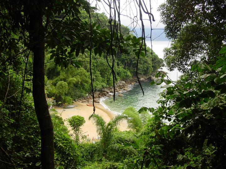 Playas desiertas de Brasil: Praia do Cedro en  Ubatuba
