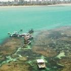 Playas en Joao Pessoa