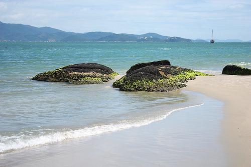 Playas en el Norte de Florianópolis: Daniela