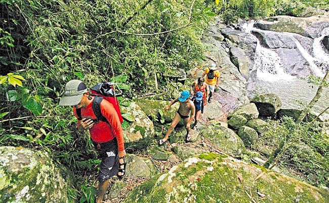 Los distintos destinos para el trekking en Brasil