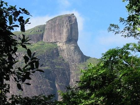 Lugares de Rio de Janeiro para visitar en familia: Parque da Tijuca